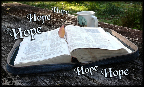 Open Bible With the word Hope written all around it